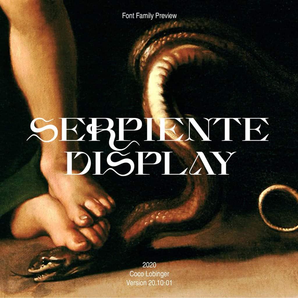 201026_Serpiente_Display_CL