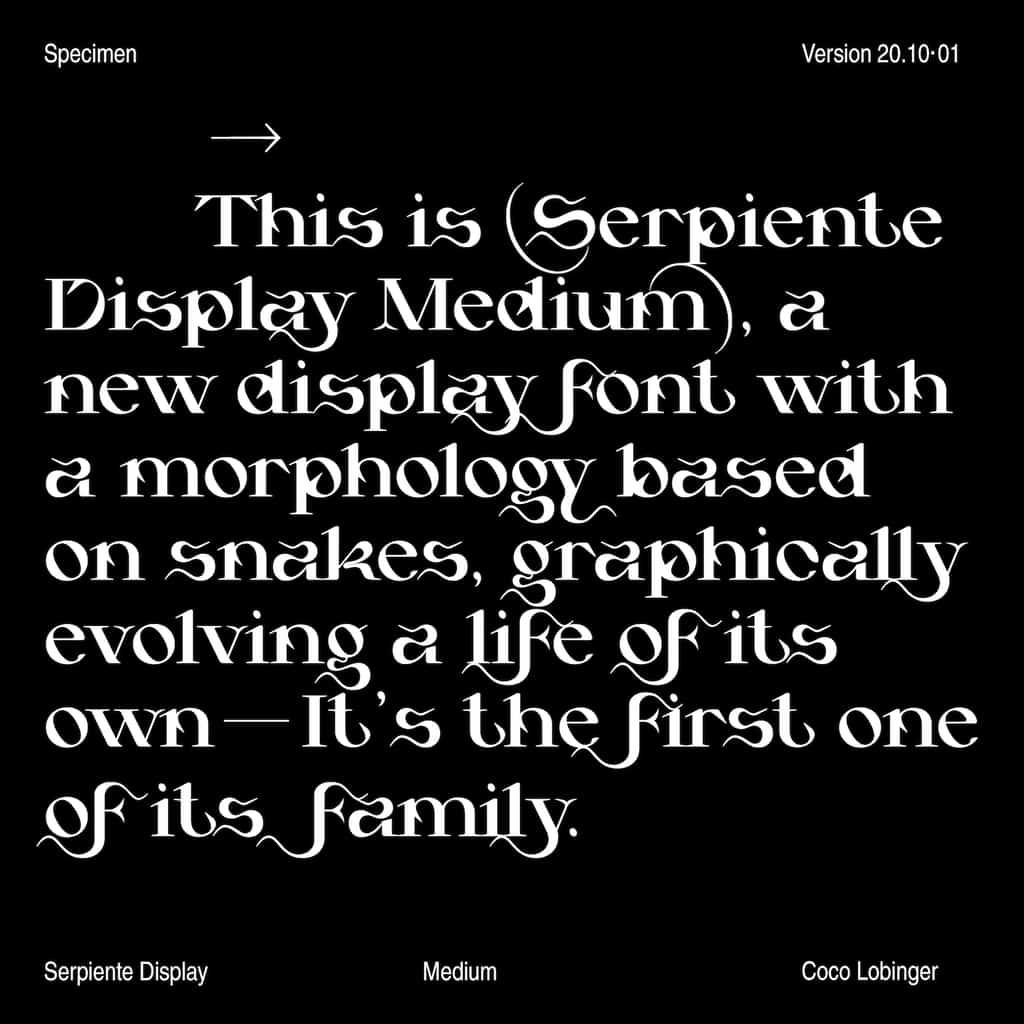 201026_Serpiente_Display_CL13