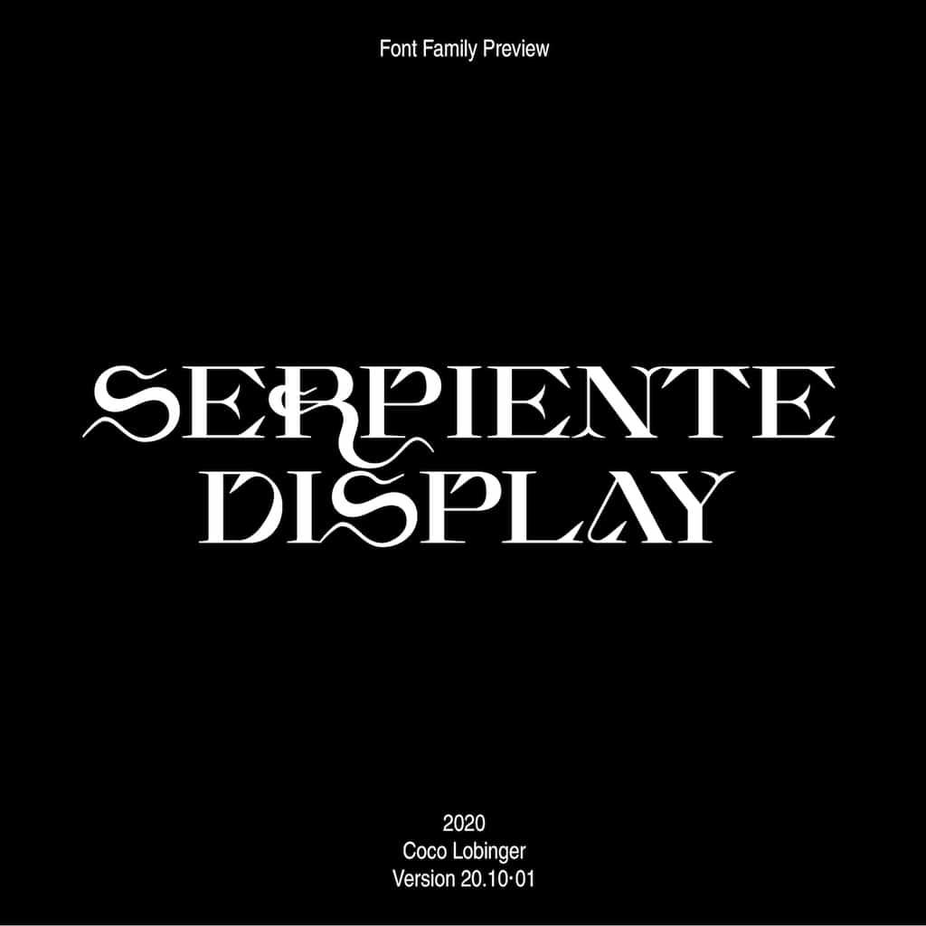 201026_Serpiente_Display_CL16