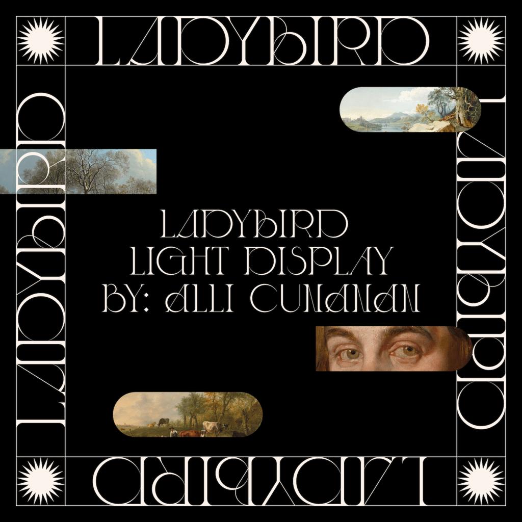 Ladybird-Visuals-01