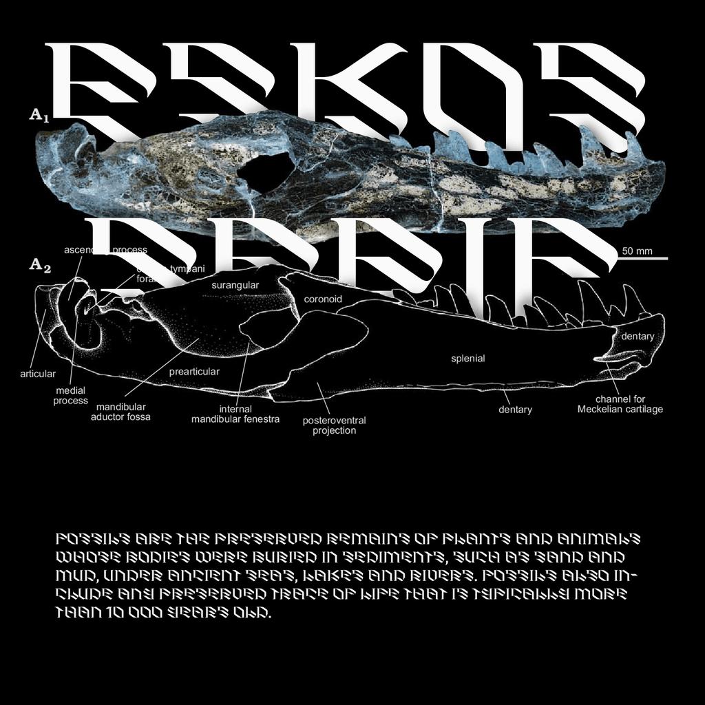 Eskos Display2